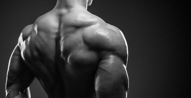 How Many Exercises per Muscle Group Should You Do to Build Muscle?